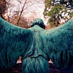"""Hol Baumann... """"One Step Behind""""... #angel... #wings"""