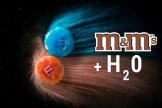 Was passiert mit M&M's in Wasser? Makrofotografie macht es möglich.