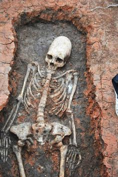 Skeleton With 'Alien' Skull Discovered In Russia