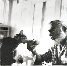 Ernest Hemingway! Ce chat ne mange pas des - how do you say - corn. @loglaed08 Mon Dieu! Qu'est-ce qui se passe?