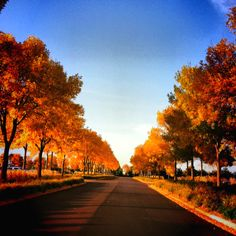 Fall in Minnesota.  The prettiest place to be in fall