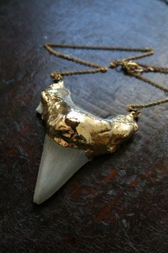 Gold Shark Tooth by Laura Lombardi