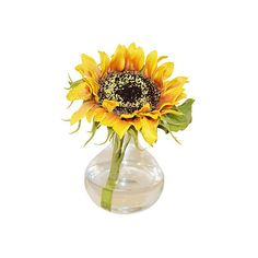 """8"""" Sunflower in Bubble Vase - Faux Arrangements ($39) ❤ liked on Polyvore featuring home, home decor, floral decor, decorative accessories, yellow, floral home decor, yellow home accessories and yellow home decor"""