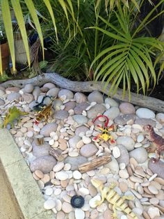 """LUDIC PLAY: """"Rock garden for our dinosaurs and lizards""""- This Little Family Daycare Outdoor Learning Spaces, Kids Outdoor Play, Outdoor Play Areas, Backyard Play, Backyard For Kids, Outdoor Fun, Play Yard, Outdoor Ideas, Natural Playground"""
