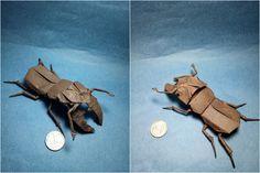 Lucanus Maculifemoratus Satoshi Kamiya by Origami Fan @Daniel
