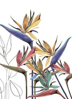 Flower Background Wallpaper, Flower Backgrounds, Flower Mural, Flower Art, Fabric Paint Designs, Cute Easy Drawings, Guache, Water Art, Mural Art