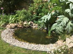 How To Build A Wildlife Pond :: Part 2 – the small gardener Ponds For Small Gardens, Fish Pond Gardens, Small Ponds, Backyard Water Feature, Ponds Backyard, Outdoor Ponds, Natural Pond, Natural Garden, Garden Pond Design