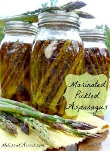 Preserve asparagus while it's in season for year round eating. This is the best pickled asparagus. Made with apple cider vinegar and so quick and easy. Great step by step tutorial on Pioneering Today-How to Make and Can Marinated Pickled Asparagus. Pickled Asparagus, Asparagus Recipe, Canning Asparagus, Marinated Asparagus, Home Canning Recipes, Cooking Recipes, Easy Canning, Canning 101, Canning Food Preservation