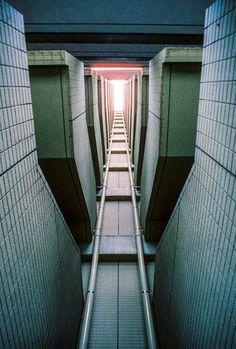 Into the light (Pentax Spotmatic / 24mm 3.5 / Cinestill 800T) : analog