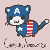 Captain ameowrica