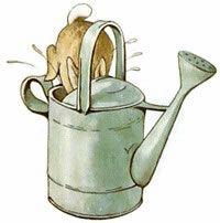 Beatrix Potter--Peter had to quickly hide from Mr. McGregor. Got wet!