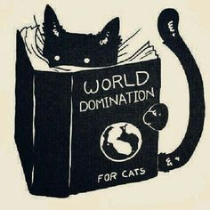 World Domination for Cats