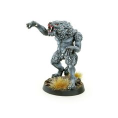 Set contains 1 resin William Woolf The Werewolf , ideal for use with 28mm scale models. It's multi-part miniature. Supplied unpainted. This kit may requires assembly. 25 mm round base included. Designed and sculpted by Marcin Szymański Painted by Piotr
