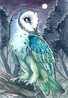 """Owl"" par Chaluny"