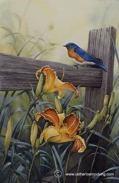 Bluebird on the fence by the flowers Watercolor Bird, Watercolor Animals, Watercolor Paintings, Bird Pictures, Pictures To Paint, Scratchboard Art, Wildlife Art, Animal Paintings, Bird Art