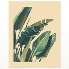 Giclée print on archival velvet fine-art paper Open edition Signed by the artist