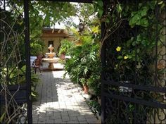 At Brew Babies Garden Bistro in Cape Coral, a vine-clad gate leads to the central courtyard which is surrounded by lush plants and pieces of art, with a babbling fountain at its center.
