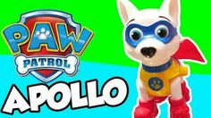 New puppie Apollo the superhero