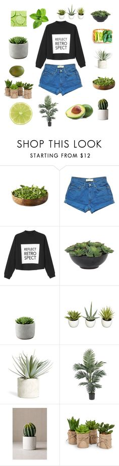 """""""g r e e n"""" by c-ityscape ❤ liked on Polyvore featuring Levi's, Monki, Lux-Art Silks, Improvements, Allstate Floral, Nearly Natural, Urban Outfitters, Abbott Collection and Crate and Barrel"""