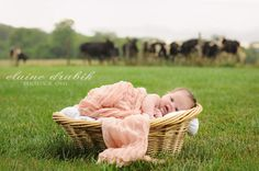 Edit of Newborn Baby on a Farm | Show and Tell See more before and after recipes here: http://www.mcpactions.com/showandtell