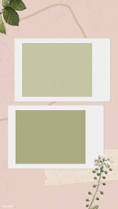 Blank collage photo frame template on pink backgro Polaroid Frame Png, Polaroid Picture Frame, Polaroid Template, Picture Templates, Photo Collage Template, Collage Photo, Photo Collages, Wall Collage, Creative Instagram Stories