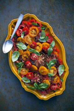 Tomato And Basil Salad by donalskehan: There are many varieties of tomatoes to choose from and for a salad like this which really celebrates them, try and choose a variety. Basil leaves are used here but thyme or oregano work just as well.  Serve as simple summer salad or as a side dish to grilled meats and fish. #Salad #Tomato #Basil