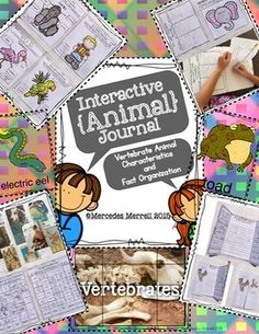 *PLEASE NOTE- I have edited, revised, and ADDED many more activities to an existing product in my store titled Animal Characteristics and Fact Organizer Flip Books and Classification Posters. If you already purchased this product, you can re-download this new version at NO ADDITIONAL COST.