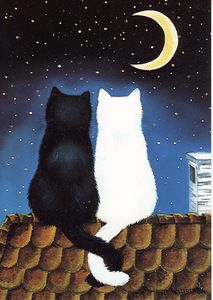 Black and White Cat (by Anna Hollerer) ♥♥♥ Gatos Preto e Branco (de Anna Hollerer) Illustration Art, Illustrations, Cat Drawing, Moon Art, Crazy Cats, Cat Art, Cats And Kittens, Cute Cats, Cat Lovers