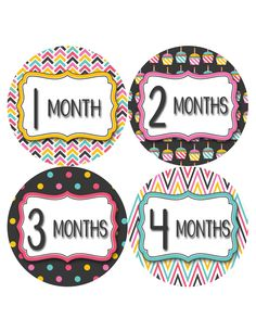 Baby Girl Monthly Milestone Baby Stickers Style #806