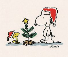 Snoopy Woodstock Peanuts christmas tree A Charlie Brown Tree. Peanuts Christmas, Noel Christmas, Winter Christmas, Vintage Christmas, Christmas Cards, Christmas Cartoons, Snoopy Christmas Decorations, Merry Christmas Funny, Christmas Trends