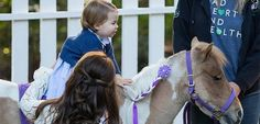 Day six of the Cambridges' royal tour of Canada brought the most eagerly anticipated engagement, with Prince George and Princess Charlotte . Prince George Alexander Louis, Prince William And Catherine, William Kate, Diana Spencer, Prince And Princess, Princess Kate, Prince Harry, English Royal Family, Royals