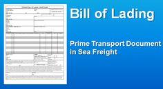 Những điều cần biết về Vận đơn - Bill of lading - B/L