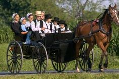 The Amish way of life isn't typically trailblazing. When it comes to health and longevity, studies are showing that the Amish rarely get cancer. Natural Cancer Cures, Natural Cures, Natural Health, Fast Foods, Amish Pie, Indiana, Amish Family, Amish Culture, Amish Community