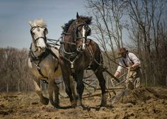 Earth Movers by R Gentry - Pixdaus