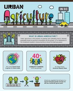 Urban agriculture infographic. Simple and to the point for local community of DC.