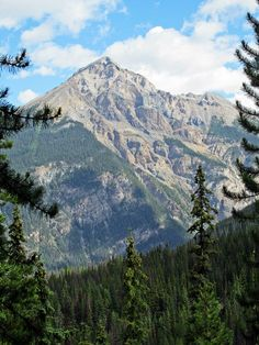 Mount Field from Mount Stephen in Yoho National Park, British Columbia, Canada