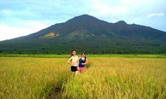 Caibiran Rice Fields