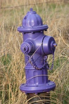 A Purple fire hydrant closeup with grass. Stock Photo