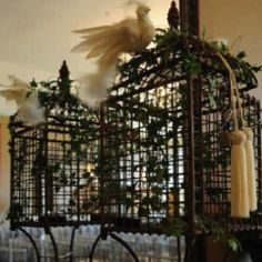 Birdcage used as a wedding card holder. I used this at my wedding and out ivy garland, white lights and a dove on the top. So cute!!