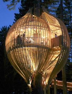 A treehouse restaurant called Yellow Treehouse, north of Auckland, New Zealand