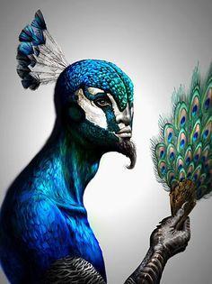Antoine Helbert's untitled peacock man is one of a number of striking portraits turning humans into birds.
