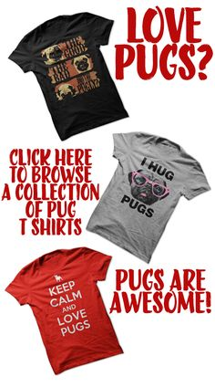 Black Friday Sale Now On | Browse A Collection Of The Best Pug T Shirts http://www.sunfrogshirts.com/DarkHorse/pugs