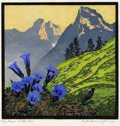 Mountain Gentian in Wilder Kaiser, 1935, woodcut, by Josef Felsinger