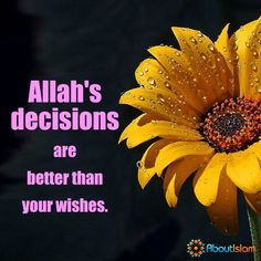 Allah's decisions are better than your wishes.