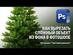 Как вырезать сложный объект из фона в Фотошопе. Уроки Фотошопа. - YouTube Blender 3d, Photoshop, Coding, Herbs, Nikon, Photography, Design, Photos, Photograph
