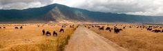 Tanzania por libre - Viaja por libre