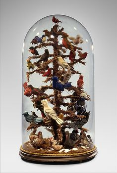 Aviary - ca. 1850-60. Made in Pennsylvania, birds made of wool perched on twigs covered with moss.