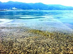 #shocolinJP 海にダイヴしたい☆ #jidori0722