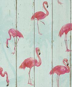 flamingo behang vogel dieren romantisch rasch 479706