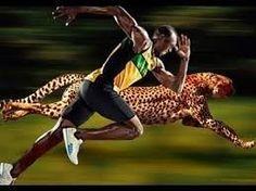 World fastest human Machine usain bolt vs cheetah speed.